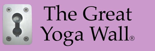Click Here to View and Purchase The Great Yoga Wall products.