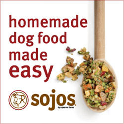 dog care - sojos - real food for dogs