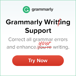 correct grammar essays