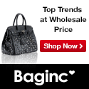 baginc.com
