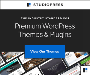 How To Build A Photography Website With WordPress: Choose a quality premium theme from the folks at StudioPress.