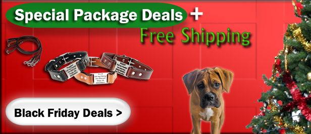 Black Friday Dog Deals