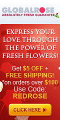 120x240 - Valentines Day $5 OFF $100