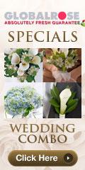 120x240 - Wedding Specials - Wedding Combo