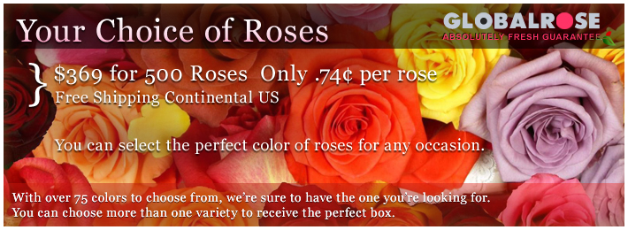 Your Choice of <strong>Roses</strong> Perfect for Weddings and Parties
