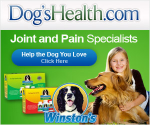 DogsHealth - Joint & Pain Specialists
