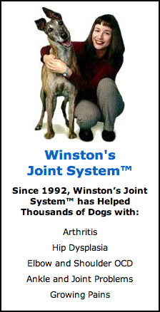 Winston's - All-natural treatment for dogs with hip dysplasia, arthritis,  joint pain and OCD at DogsHealth.com