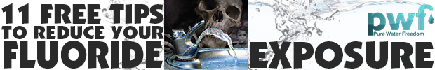 PurWaterFreedom Fountain 620x100 A Fluoride Free Pineal Gland is More Important than Ever
