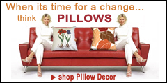 When it time for a change think pillows from Pillow Decor