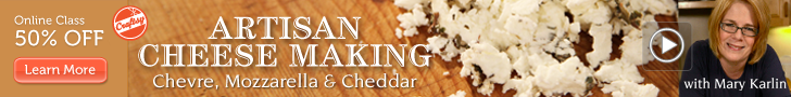 Online Cheese Making Class