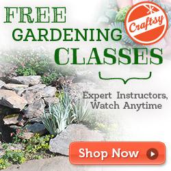 Online Vegetable Gardening Class