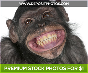 Stock Images