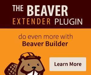 Beaver Extender Plugin