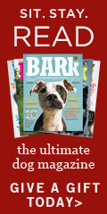 Give The Bark -- The Ultimate Dog Magazine