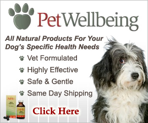 PetWellbeing.com is the trusted source for your dog's natural health care.