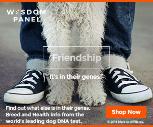 WISDOM PANEL™ DNA Test for dogs