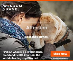 WISDOM PANEL™ DNA Test 300x250