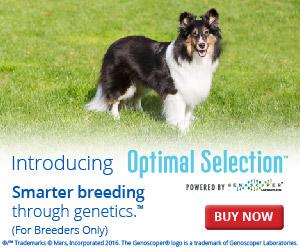 Smarter breeding through genetics.™