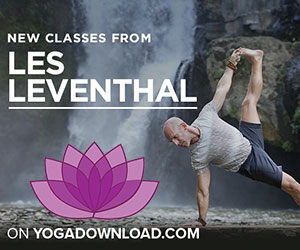 Les Leventhal Yoga Download
