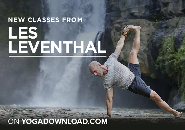 Les Leventhal Yoga Classes