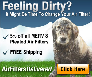 Feeling Dirty? Time To Change Your Air Filter!
