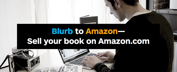 Blurb to Amazon