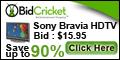 Bid Cricket.com coupons