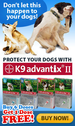 Flea & Tick Killer