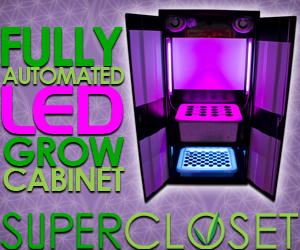 The LED Deluxe 3.0 is the LED updated grow box for the #1 Selling Grow Box the Deluxe 3.0 grow box.
