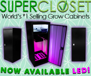 The LED SuperStar is the most popular grow box in the SuperCloset suite of grow boxes.