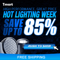 August Hot Light Sale - Save up to 85% off