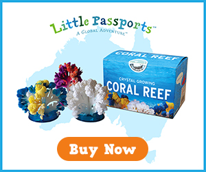 Create your own colorful coral at home with Little Passports' Coral Reef Kit!