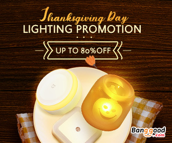 20% OFF Lighting Promotion for Party