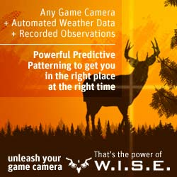 WISE Trail Camera Software: Unleashe Your Camera