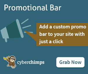 Promotional Bar   Plugin 300X250