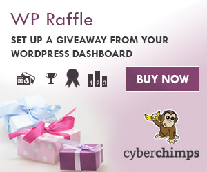 WP Raffle Plugin 300X250