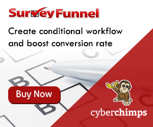 SurveyFunnel Plugin 300X250