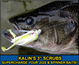 Kalin's Scrubs