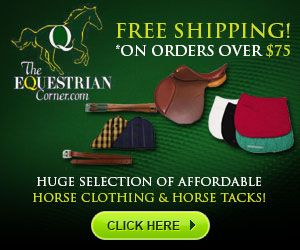 300x250 - Horse Clothing & Horse Tacks