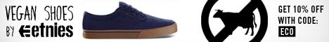 etnies vegan shoes