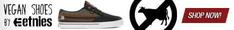 etnies Vegan shoes for men, women and kids