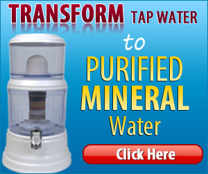 Zen Water Countertop Filtration Systems Review