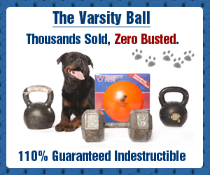 Varsity Ball