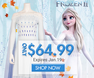 Flash Sale for Elsa Costume: Only $64.99