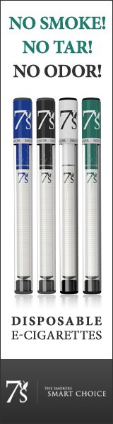 Disposable E-Cigarettes 2