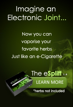eSpliff 1.0 - The electronic joint