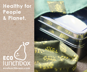 ECOlunchbox: Earth-friendly Lunchware and Bento Boxes