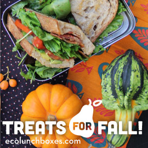 ECOlunchbox - Healthy Lunchboxes to hold your treats!