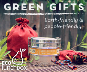 Green Holiday Gift Guide 2018