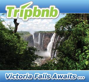 Tripbnb - Worlds Lifestyle Market Place